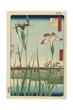 Iris Garden at Horikiri, May 1857 Giclee Print by Utagawa Hiroshige