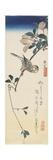 Java Sparrow and Magnolia, 1834-1839 Giclee Print by Utagawa Hiroshige
