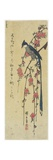 Long-Tail Cock on Drooping Cherry Tree Giclee Print by Utagawa Hiroshige