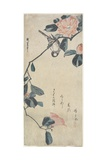 (Bird on Camellia), Early 19th Century Giclee Print by Utagawa Hiroshige