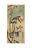 Secchu Tsubaki Ni Suzume Impression giclée par Utagawa Hiroshige