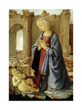 The Virgin Adoring the Christ Child (The Ruskin Madonna) C.1470 Giclee Print by  Verrocchio