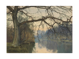 A Great Tree on a Riverbank, 1892 (Pencil, Pen and Black Ink and W/C on Paper) Giclee Print by William Fraser Garden