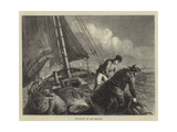 Shrimping in the Medway Giclee Print by Walter William May