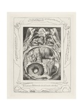 Behold Now Behemoth Which I Made with Thee, 1825 Giclée-tryk af William Blake