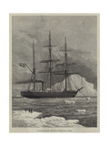 The Swedish Arctic Exploring Ship Vega Among Icebergs Giclee Print by Walter William May