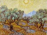 Vincent van Gogh - Olive Trees, 1889 Digitálně vytištěná reprodukce