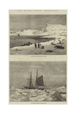 The Dutch Arctic Expedition Giclee Print by Walter William May