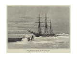 Arctic Exploration, the Eira, Mr Leigh Smith's Yacht Giclee Print by Walter William May