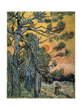 Pine Trees at Sunset, 1889 Giclee Print by Vincent van Gogh