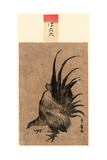 Niwatori, Chicken. [Between 1804 and 1818], 1 Print : Woodcut, Color ; 17.2 X 11.4 Giclee Print by Utagawa Toyohiro