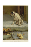 Guilty, or Not Guilty Giclee Print by William Henry Hamilton Trood
