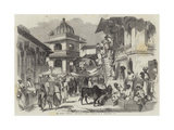 The Bazaar, Oodipoor, Rajpootana Giclee Print by William Carpenter