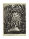 The Garden, Shepheard's Hotel, Cairo Giclee Print by William Henry James Boot