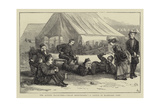 The Autumn Manoeuvres, Great Expectations, a Sketch in Blandford Camp Giclee Print by William III Bromley