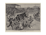 A Degrading Spectacle, the Bull-Fight at Boulogne Giclee Print by William Henry Pike
