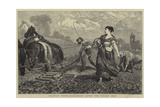Country Notes, Harrowing after the Potato Crop Giclee Print by William III Bromley