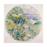 Wild Flowers and Vegetation, in a Lakeland District Giclee Print by William Linnaeus Casey