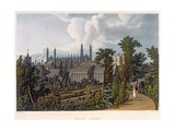 The Botanical Gardens Giclee Print by William Westall