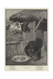 Food for Reflection Giclee Print by William Weekes