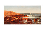 Rocky Shore, 1862 Giclee Print by William Stanley Haseltine