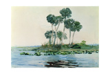 St. John's River, Florida, 1890 Giclee Print by Winslow Homer