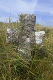 Grave Cross in Sea Dunes at Church of St. Tanwg Photographic Print