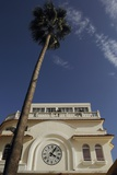Low Angle View of Building and Palm Tree Photographic Print