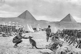 Lines of the Australian 9th and 10th Battalions at Mena Camp Photographic Print