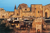 Papal Palace of Avignon Giclee Print