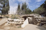 Park of Yad Vashem (Holocaust Martyrs and Heroes Remembrance Authority) Holocaust History Memorial Photographic Print