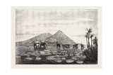 The Great Tank of Minery in the Island of Ceylon Giclee Print