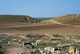 View of the Ruins of Ebla Photographic Print