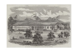 The Industrial and Agricultural Exhibition at Coimbatore, Madras Presidency Giclee Print