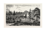 Residence of Mrs Hughes New Rugby Tennesee, 1884, USA, America, United States Giclee Print
