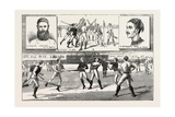 La Crosse Match, Played Last Saturday at Kennington Oval, by North of England Against South, 1883 Giclee Print