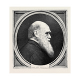Charles Robert Darwin, Ll.D., F.R.S., Born February 12, 1809; Died April 19, 1882 Giclee Print
