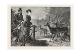 Feeding the Deer, Phoenix Park, Dublin, Ireland, 1876, Europe, European Giclee Print
