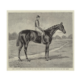Lord Alington's Common, Winner of the Two Thousand Guineas, and Favourite for the Derby Giclee Print