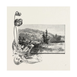 The Lower St. Lawrence, Home of the Pitcher Plant, Canada, Nineteenth Century Giclee Print