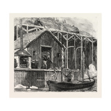 The Newfoundland Fisheries Question: British Fishing Room on the French Shore, Canada, 1890 Giclee Print