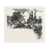 French Canadian Life, an Old Orchard, Canada, Nineteenth Century Giclee Print