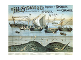 Poster Advertising 'H.L. Ettman and Co., Importers of Sponges and Chamois', 1897 Giclee Print