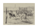 Polo Match at Lillie Bridge in Aid of the Funds of the West London Hospital Giclee Print