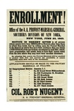 Recruitment Poster for the Southern Division of New York, 23rd June 1863 Giclee Print
