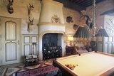 Billiard Room with Hunting Trophy, Chateau of Fayrac, Castelnaud-La-Chapelle, Aquitaine, France Photographic Print