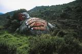 Male Face and Hand, Mural on Stone Near Orgosolo, Barbagia Ollolai, Sardinia, Italy Photographic Print