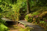 The Way to the Meditation Hall (Dojo) in the Garden of Zen Temple Ryumonji Photographic Print