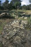 Ruins of Nuragic Village of Serra Orrios, 16th-8th Century Bc, Near Dorgali, Sardinia, Italy Photographic Print