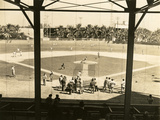 Opening Day of Spring Training for the New York Giants at Miami Field, 1946 Photographic Print